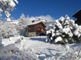 Charmante maison de montagne 4-5 p. pleine nature, Samoens