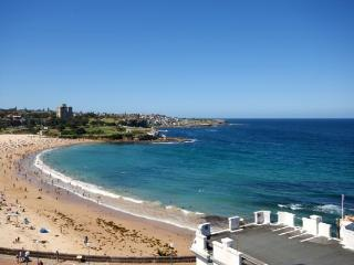 COOGEE BEACH VIEWS  WT23