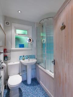 family batjhroom  shower over bath