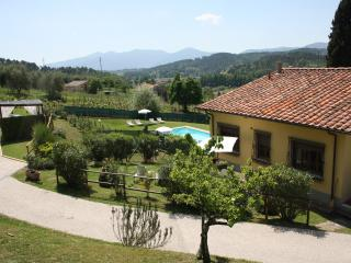 Lovely house for family on  Lucca hills  with pool
