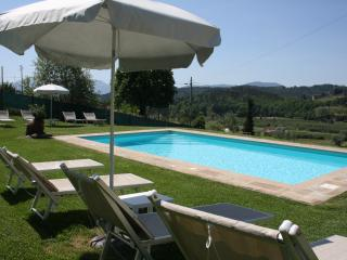 Amazing house for family on  Lucca hills  with pool, garden, wifi  and now SPA
