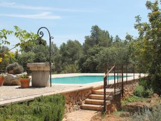 Lujosa Casa de campo y piscina
