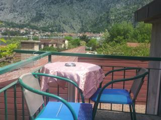 Apartments witha view old town Kotor