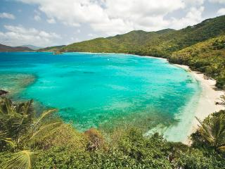 Situated 50 feet up a verdant hillside above St. John's Peter Bay. MAS 2BE
