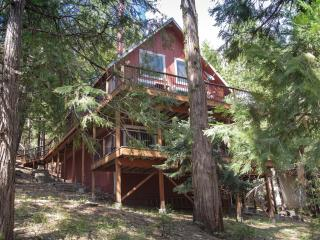 Luxury cabin close to Pinecrest Lake & Strawberry!