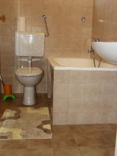 A5(6): bathroom with toilet