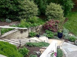 An Exquiste Garden Apartment in Arlington,VA