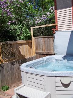 Hot Tub - 3 person