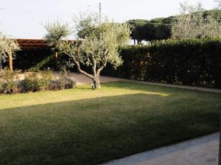 Maremma -Casa degli olivi