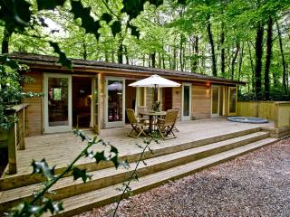 Huccaby Lodge, 3 Indio Lake located in Bovey Tracey, Devon