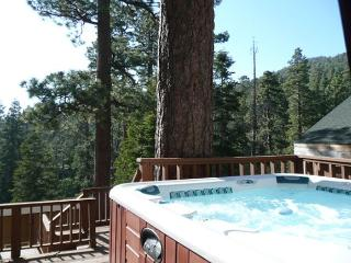 CLOSE to LAKE! PRIVATE HOT TUB! Walk to Captn John's Marina
