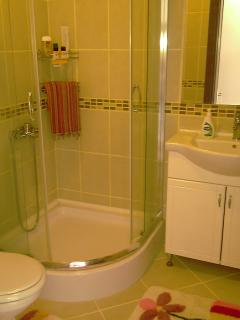 Bathroom - there are total of two bathrooms upstairs and a toilet downstairs