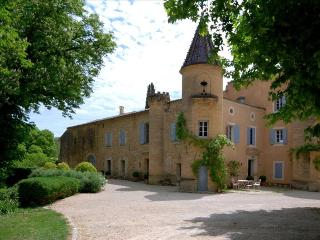 Le Chateau de Peintre, Spectacular Chateau in Provence, outside Uzès with own Private Lake, and Pool