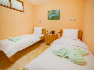Hotel & Resort Gacka - Twin Room 3, Mojkovac