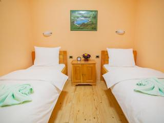 Hotel & Resort Gacka- Twin Room 2, Mojkovac