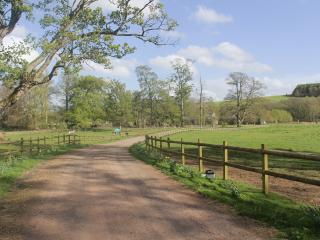 The driveway, accessed via a stone entrance way, with paddocks either side