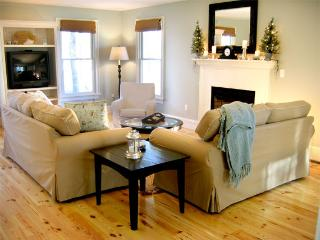 Living room with gas fire place