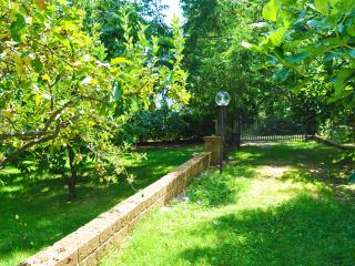 Appartamento in villa nel parco 2, Canepina