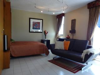 Practical, efficient and beautiful Studio, Isla Verde