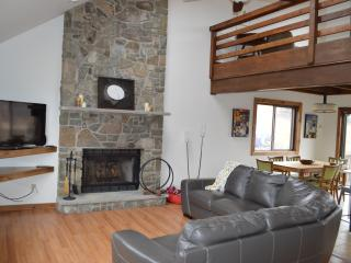 Winter in mountains, Renovated, Games, Pool Table, Lake Ariel