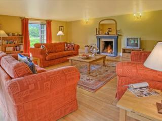 The East Lawn - spacious with log fire, Selkirk