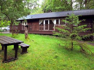 Liever Log Cabin, Dalavich