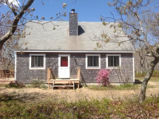 Nestled in the Woods, Edgartown