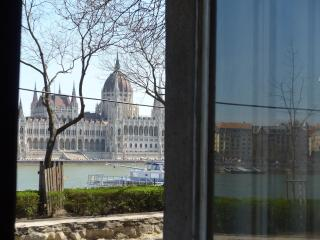 50 metres from the River Danube - Parliament view
