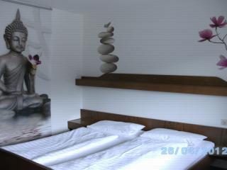 Vacation Apartment in Horb am Neckar (# 7292) ~ RA63820, Glatt
