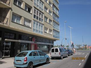 alquiler en SAN SEBASTIAN PLAYA DE GROS ZURRIOL, San Sebastian - Donostia