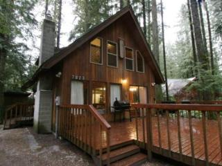 #35 A Pet Friendly Country Cabin near Mt. Baker!, Glacier