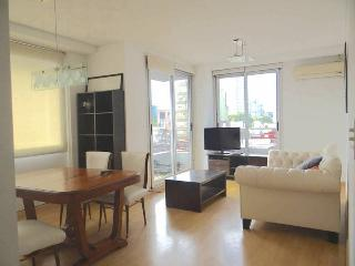 2 Bedrooms great modern tower, Palermo Soho, Buenos Aires