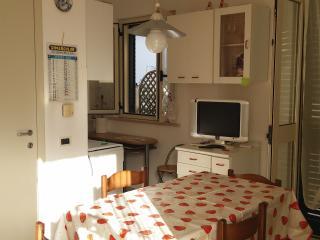 Affitasi Grazioso Appartamento