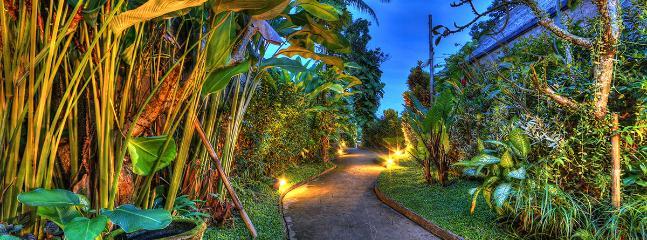 Pathway Garden