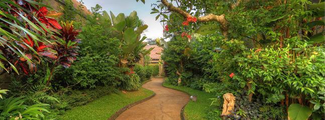Pathway garden look