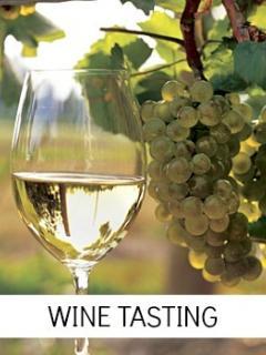 Plenty of Vineyards in the region