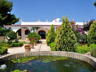 Villa Diana, great for families, baby friendly, fab pool with swimup bar, slide.