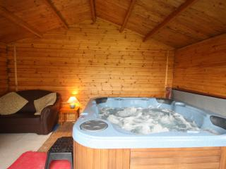 Maesyderi Cottage with Indoor Private Use Hot Tub, Llandysul