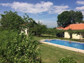 Villa Vinogradine With  Pool, Mahala