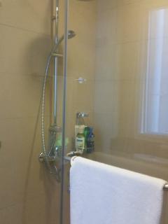 Master bathroom (rain) shower