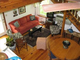 Blue Water Lodge and Studio, Beaver Lake Front Cabin, Boat Dock, Large Decks, Eureka Springs