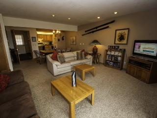 Snowdance Condominiums B102 - Walk to slopes, updated bathrooms and kitchen, Mountain House!, Keystone