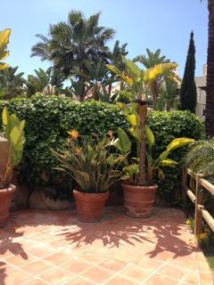 A gardener's paradise