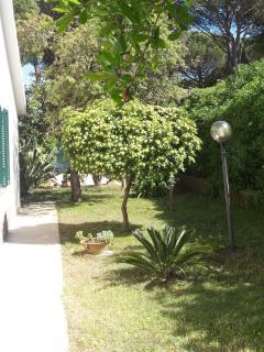 Passaggio laterale  verso l'ingresso posteriore alla cucina abitabile