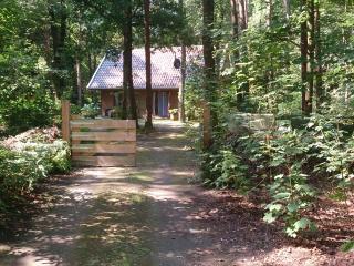 Logeerkamer in boshuis