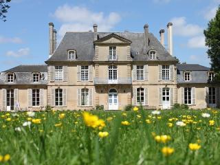 Gîte du Château les Hortensias