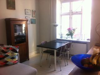 Copenhagen apartment close to Harbour bath, Copenhague