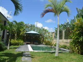 ubud 2 bed room private villa, Petulu