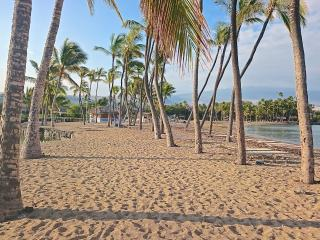Kolea DIRECT BEACH ACCESS-Newly Remodeled-Resort fees included-Best Value  2B/2B