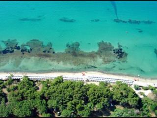 Golfo di Follonica Parco della sterpaia, Campiglia Marittima